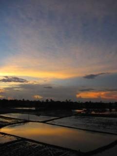 夕暮れの田園風景:写真/Srut