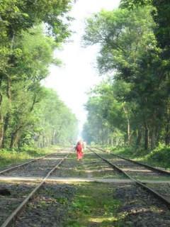 バングラデシュ、西ベンガル国境付近:Photo By スルティ