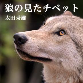 狼の見たチベット