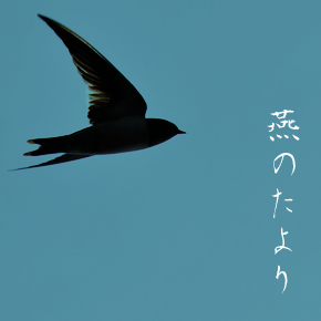 liu_eyecatch