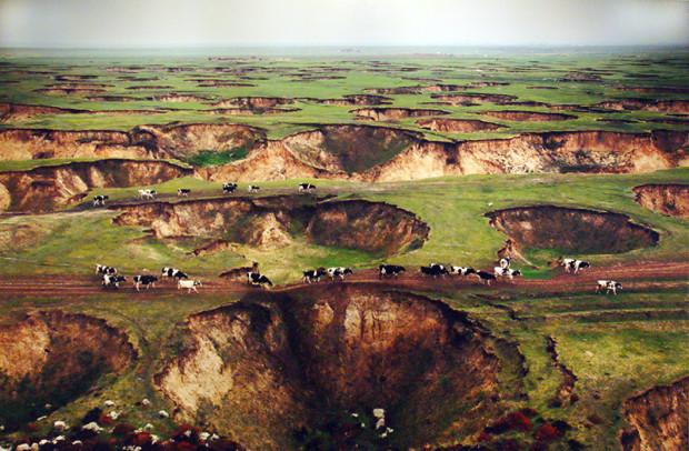 テーマ展における盧広の作品、炭鉱の採掘により陥没が多数発生したホロンバイル草原を撮影、2012年(写真/張全)