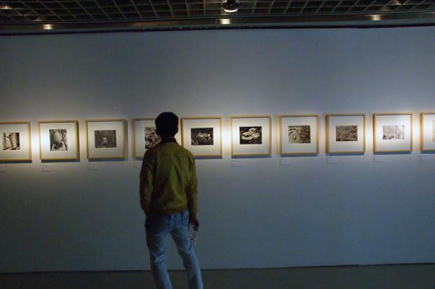 テーマ展の展示風景(写真/張全)