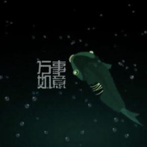 左小祖咒【万事如意 Live】乌兰巴托的夜[日中字幕版]