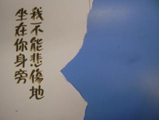 左小祖咒『憂傷的老板』上海人民出版社 2010、p252