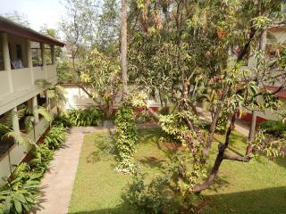 宿舎のベランダから見る中庭