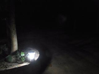 電気のない村の夜道