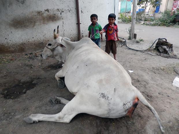 インドの農村部 子供たちへの教育も行き届かない