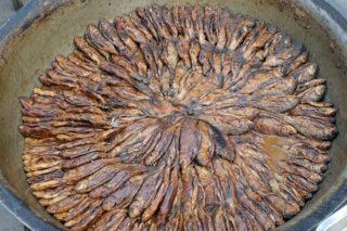 鮒(フナ)のくさや。焼いて食べると美味で、調味料としても使える