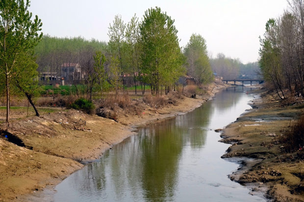 柘城の廃黄河は流れが細く、護岸されていない岸辺は心地よい