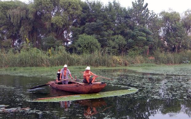 古黄河自然風景区に原始の廃黄河が保存されていて心地よい