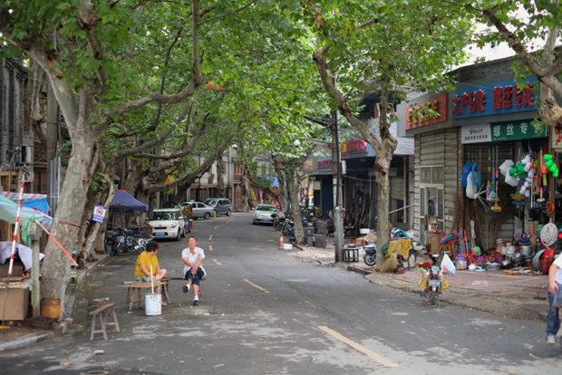 清江浦岸の路地。並木が濃い葉をつけ、真夏の陽射しを遮ってくれる