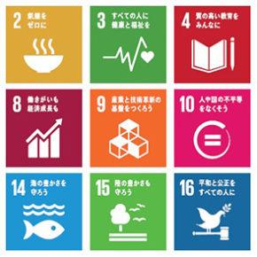 持続可能な開発目標と社会的連帯経済との関係
