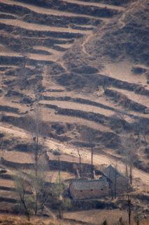 南の山の斜面には段々畑が切ってあり、農耕地帯であることが判る