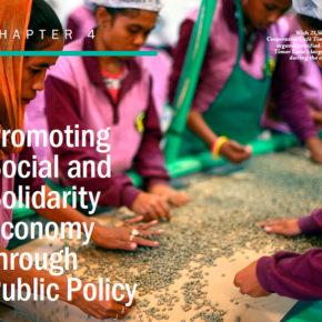 国連社会開発研究所の提唱する社会的連帯経済関係の公共政策