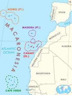 マカロネシアの地図