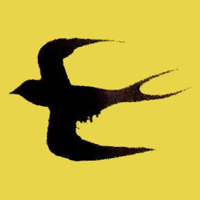 第34回 サロン「燕のたより」のお知らせ