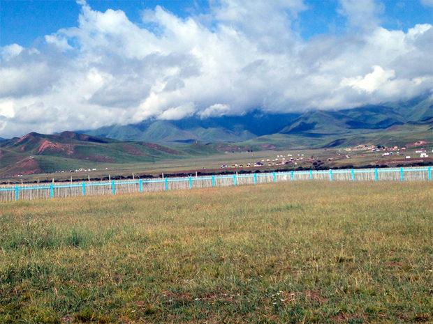 草原には柵が設けられている 撮影/筆者