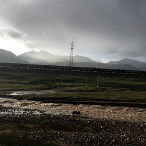 チベット旅行で思ったこと、感じたこと⑤ 青蔵公路、冬虫夏草