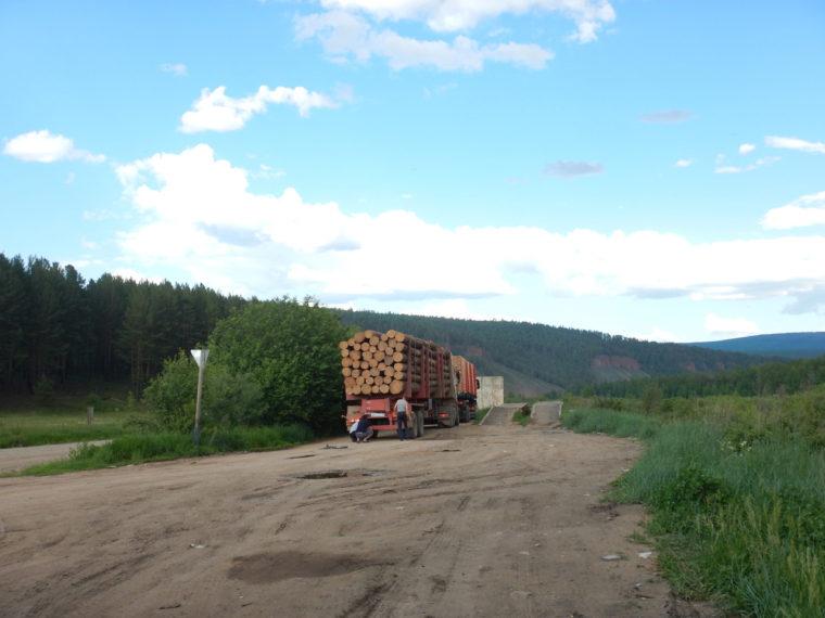 伐採した木材を運ぶ車