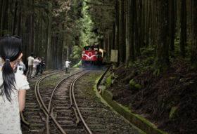 スイッチバックで進行方向を変える列車(筆者撮影)