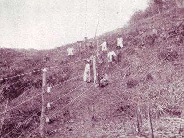 隘勇線に沿って構築された電気柵(明治45年、台湾総督府蕃務署)